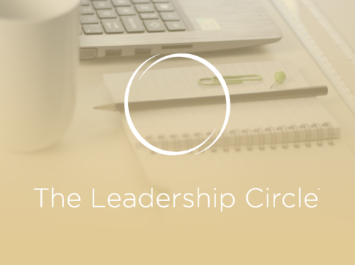 Leadership Culture Assessment & Consulting